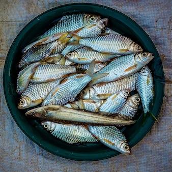 Overhead schot van sardines op een donkergroene plaat