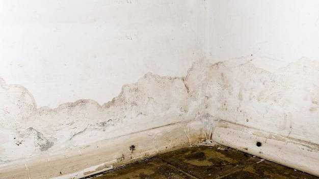 Overstroming van regenwater- of vloerverwarmingssystemen, met schade tot gevolg, afbladderende verf en schimmel. - afbeelding