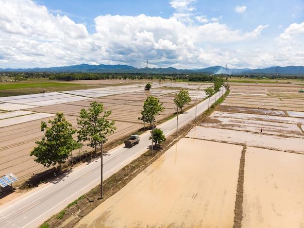 Overstroomd rijstveld voor rijstplant