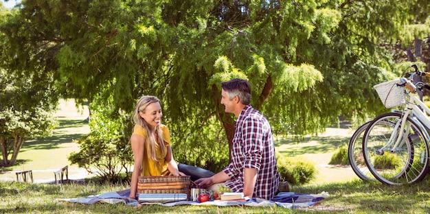 Paar dat een picknick in het park heeft