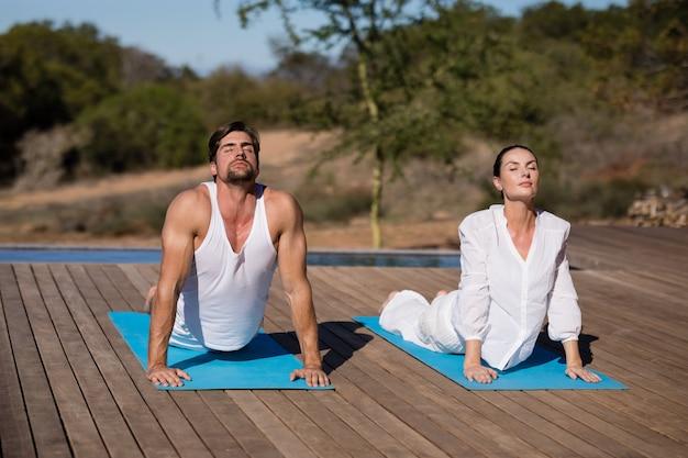 Paar die yoga uitvoeren bij safarivakantie