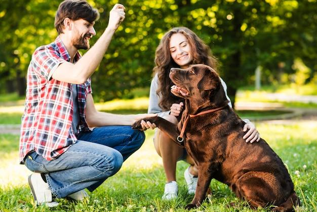 Paar het spelen met hun hond in park