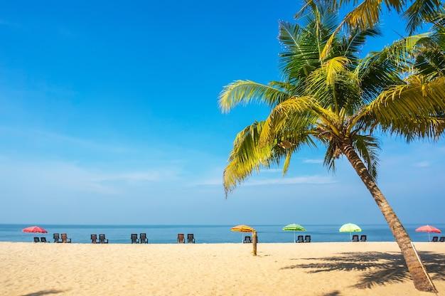 Paar ontspannen op het strand. ligstoelen onder palmbomen op zand