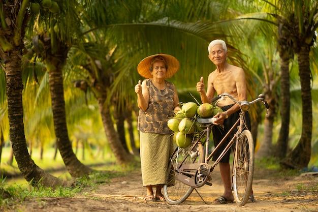 Paar van de oude dagman en vrouw die kokosnoot in kokosnotenlandbouwbedrijf verzamelen in thailand.