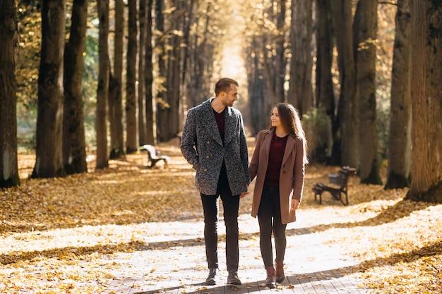 Paar verliefd wandelen in het park hand in hand in de herfst