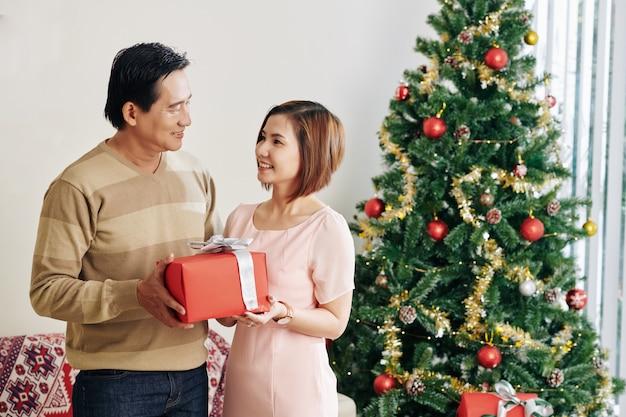 Paar vieren kerstmis