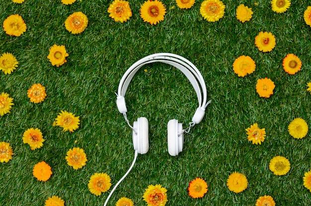 Paardebloembloemen en koptelefoon op groen gras.