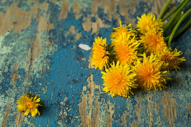 Paardebloemen op rustieke houten oppervlak. bloemen