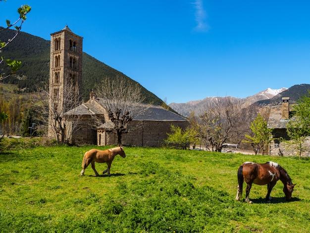 Paarden grazen aan de voet van de romaanse kerk van catalonië