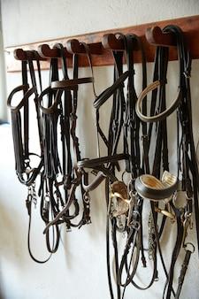 Paarden tack in een rij hoofddeksels halters hoofdstellen