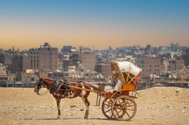 Paardenkar in de oude arabische stad tegen de achtergrond van de chaotische ontwikkeling van cairo