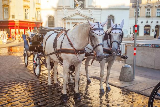 Paardenkoets of fiaker, populaire toeristische attractie