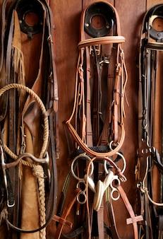 Paardrijders complementeert, rigs, teugels, leer over hout