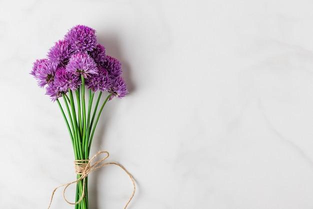 Paars alium bloemen boeket op witte ondergrond