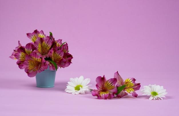 Paars alstroemeria's boeket en bloemblaadjes op paars