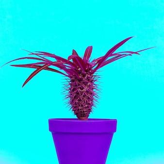 Paars cactusontwerp. minimale concept art