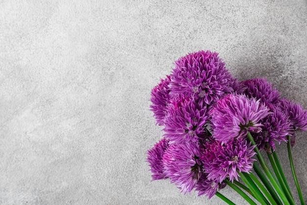 Paarse alium wilde bloemen op grijze betonnen ondergrond