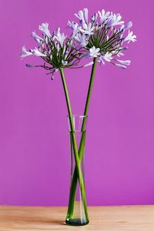 Paarse bloemen in een glazen vaas