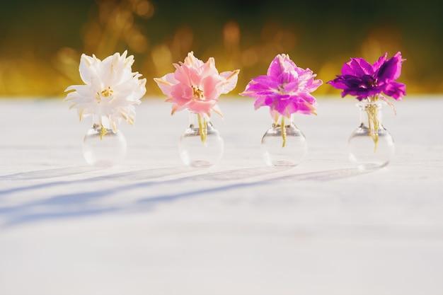 Paarse en paarse bloemen van helichrysum, zomeravond in het dorp, warme zonnige zonsondergang, schaduwen van buiten. mooie planten van batanica in een glazen kolf.