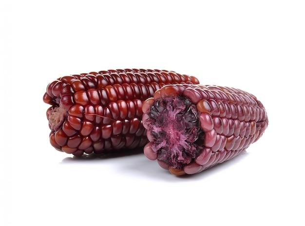 Paarse maïs geïsoleerd