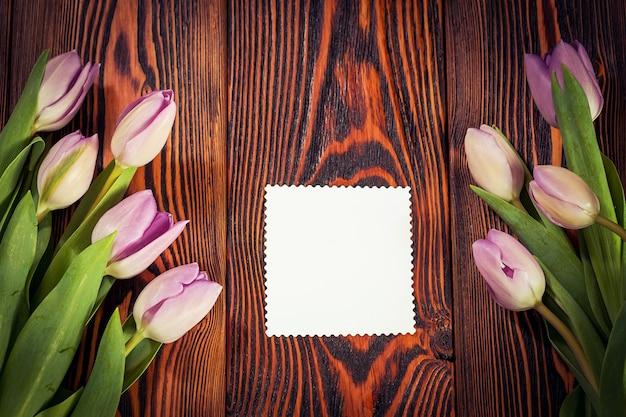 Paarse tulpenbloemen
