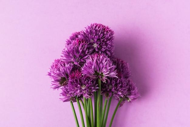Paarse wilde bloemen of uienbloemen op pastel paars. plat lag