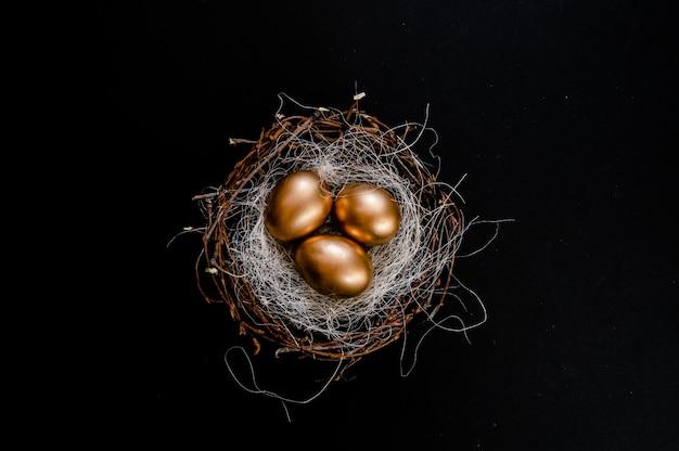 Paaseieren in vogels nest op zwarte achtergrond.