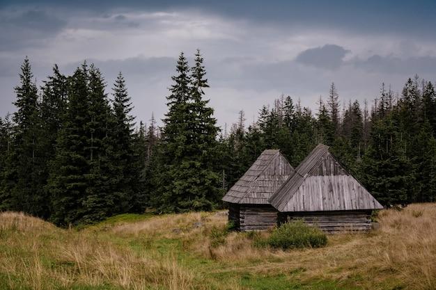 Pad door gasienicowa-vallei in het tatra-gebergte, polen