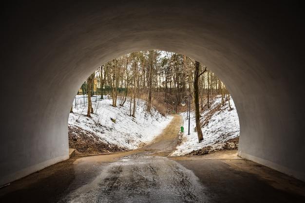 Pad door tunnel naar bos, pad naar bos, tunnel naar lns