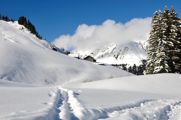 Pad in de sneeuw