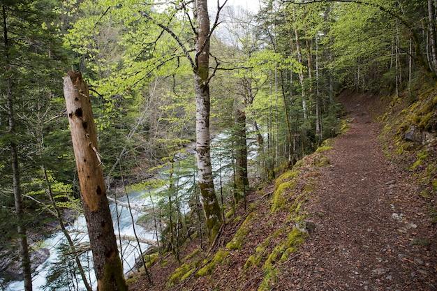Pad in het nationale park ordesa y monte perdido.