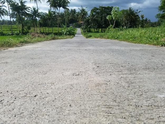 Pad met cement bestrating