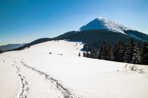 Pad met voetafdrukken in sneeuw in de winter bergen