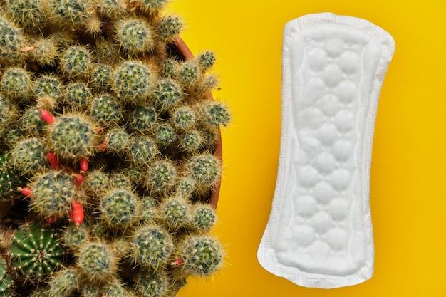 Pad vrouw naast een cactus als een concept van pijn in de periode