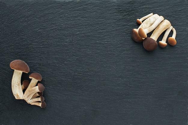 Paddestoelen, honingplaatzwammen op een zwarte achtergrond. zwart stenen bord.