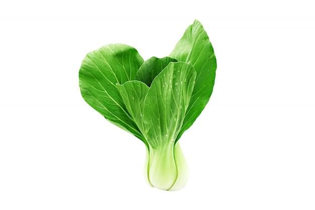 Paksoi (chinese kool) groente geïsoleerd op een witte achtergrond.