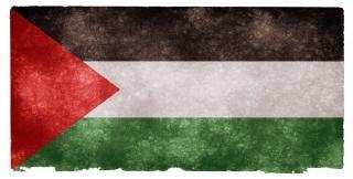 Palestina grunge vlag
