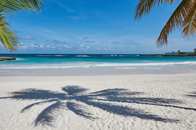 Palm beach in tropisch idyllisch paradijs eiland - caribisch gebied - dominicaanse republiek punta cana