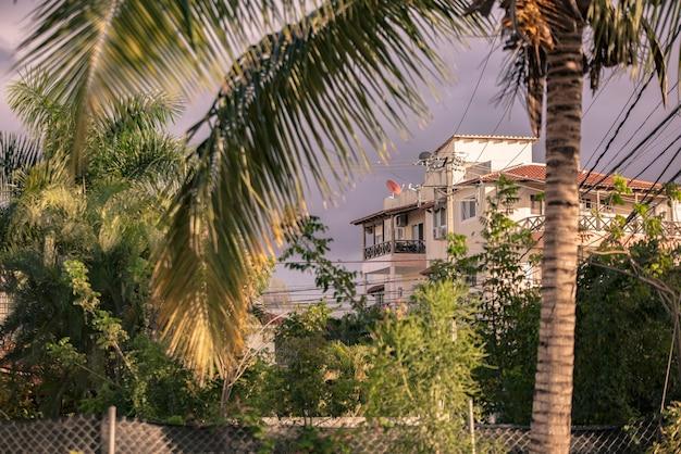 Palm en huizen in de dominicaanse republiek in bayahibe