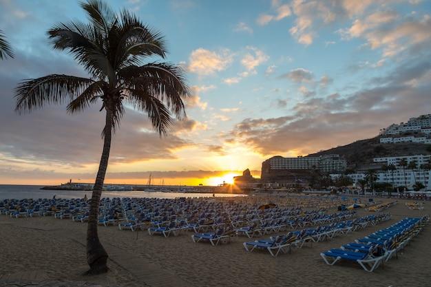Palm en sunbeds in de zonsondergang bij het strand van puerto rico in gran canaria, spanje.