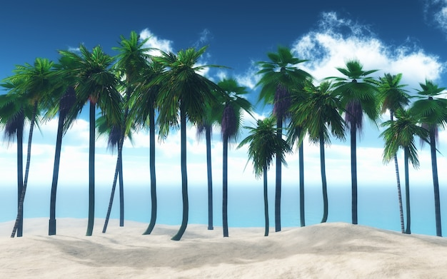Palm in een strand