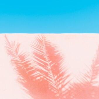 Palm. schaduw op de muur. minimale kunst. tropische modestemming