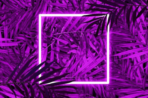 Palmbladen in levendige kleuren