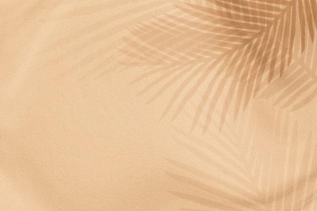 Palmbladen schaduw op een beige