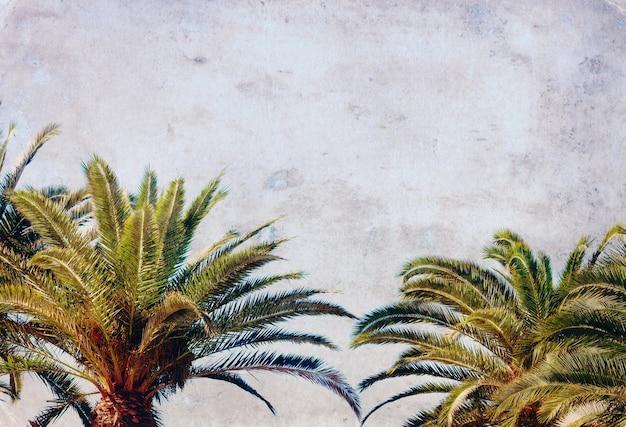 Palmbladeren op een heldere blauwe hemelachtergrond, retro getint en getextureerd