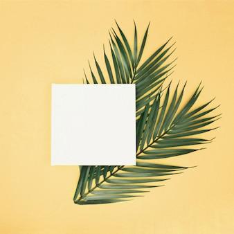 Palmbladeren op gele achtergrond met leeg teken