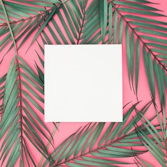 Palmbladeren op roze achtergrond met leeg teken