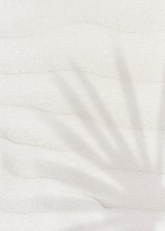 Palmbladschaduw op een zand getextureerde achtergrond met kopieerruimte
