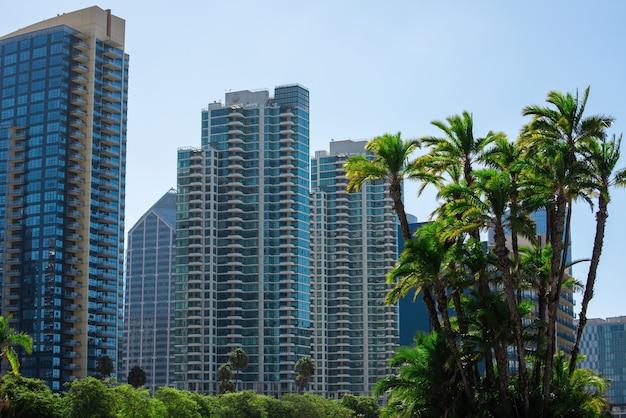 Palmbomen en gebouwen in san diego