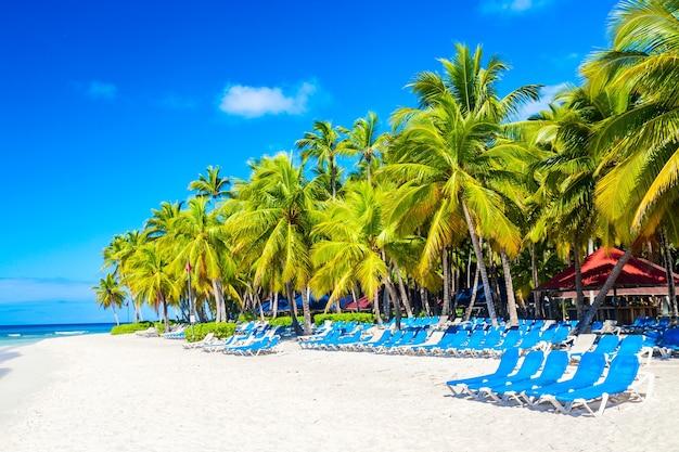 Palmbomen en stoelen op het caribische tropische strand